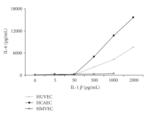 Dose dependent responses of HUVEC, HCAEC, and HMVEC to IL-1 β (0–2000 pg/mL) as measured by ELISA of released IL-6 protein levels from cell supernatants. Results are expressed as a mean of three separate experiments.