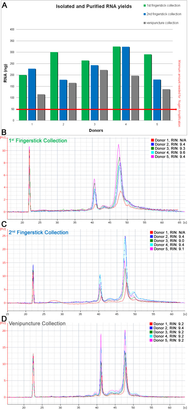 Fingerstick and venipuncture RNA yields and Agilent 2100 bioanalyzer traces including RNA integrity numbers (RINs) . (A) Fingerstick starting material: 70 uL, venipuncture starting material: 2.5 mL, yields normalized to 70 uL. (B, C, D) Agilent 2100 Bioanalyzer total RNA traces using the PicoChip (B C) and the NanoChip (D) .