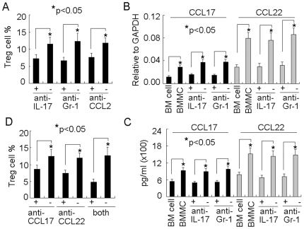 Mast cell-induced IL-17 mediates Treg cell infiltration via upregulating chemokines CCL17 and CCL22. (A) The interference of IL-17 impaired the effect of mast cells on Treg cell infiltration. 5×10 6 BMMCs were injected into tumor-bearing mice by i.v. injection. IL-17 or CCL2 neutralizing antibody or Gr-1 depleting antibody was i.p. injected to the mice 1 h, 2 days and 5 days after BMMCs injection. On day 7, the tumor-infiltrating lymphocytes were isolated to analyze CD3 + Foxp3 + Treg cells by flow cytometry. The results were combined from three mice. (B and C) Mast cells-induced IL-17 upregulated CCL17 and CCL22 expressions in tumor microenvironment. BMMCs were injected into tumor-bearing mice. IL-17 or Gr-1 antibody was i.p. injected to the mice at different time points. Seven days after BMMCs injection, the tumor tissues were used to analyze CCL17 and CCL22 expressions by real time RT-PCR (B) and ELISA (C). (D) The effect of CCL17 and CCL22 on Treg cell infiltration. BMMCs were injected into tumor-bearing mice. CCL17 or CCL22 neutralizing antibody was i.p. injected to the mice 1 h, 2 days and 5 days after BMMCs injection. On day 7, the tumor-infiltrating lymphocytes were isolated to analyze CD3 + Foxp3 + Treg cells by flow cytometry. The results were combined from three mice.