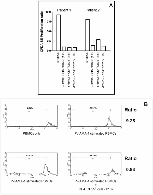 Indirect suppression elicited by CD4 + CD25 + T regulatory cells from P. vivax -infected individuals. (A) CFDA-SE Proliferation ratio of Pv-AMA-1- stimulated PBMCs (sPBMCs) and sPBMCs co-cultured with different proportions of autologous CD4 + CD25 + lymphocytes (1∶2, 1∶5 and 1∶10, CD4 + CD25 + cells: sPBMCs). Results are expressed for two malaria-infected donors who presented positive proliferative response after Pv-AMA-1 stimulation. (B) Representative FACS histogram plots for 1 out 2 donors with positive proliferative response after Pv-AMA-1 stimulation showing CFDA-SE staining after antigen stimulation and co-culturing with CD4 + CD25 + T cells. CFDA-SE Proliferation ratio for sPBMCs was calculated by proliferative response observed in Pv-AMA-1-stimulated PBMCs (indicated by positivity for CFDA-SE) divided by basal proliferative response of non-stimulated cells (PBMCs only). CFDA-SE Proliferation ratio for co-cultured cells were calculated by proliferative response observed in Pv-AMA-1-stimulated PBMCs with CD4 + CD25 + T cells divided by proliferative response observed in Pv-AMA-1-stimulated PBMCs only.