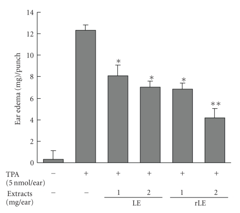 Effects of LE and rLE on TPA-induced mouse ear edema. The right ear of each ICR mouse was topically treated with LE and rLE (1.0 and 2.0 mg/ear) in 50 μ l vehicle (DMSO-acetone: 15–85, v/v) 30 minutes prior to the application of 5 nmol TPA in 50 μ l vehicle. The left ears were treated with vehicle alone. Four hours later, edema was measured as the increase in the weight of the right ear punch over that of the left. Data are expressed as means ± SE of 5 mice per group. * P
