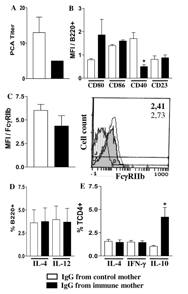 Effect of passive IgG transference to pregnant mice on offspring's B and T cell responses . Nonimmunized pregnant mice were injected with IgG from nonimmunized or immunized mothers. Offspring immunized with OVA were evaluated (20 d-o) for: (a) anti-OVA IgE Ab levels by PCA reaction; (b) CD80, CD86, CD40 CD23 molecule expression on splenic B cells (B220+); (c) B cell FcγRIIb expression (B220+IgM+) by flow cytometry. Histogram of FcγRIIb expression on B cells of offspring from immunized (shaded histogram, MFI in bold numbers) or nonimmunized mothers (white histogram, MFI in light numbers); (d) intracellular cytokines of splenic B cells (B220+) and (e) CD4+ T cells after 424 h incubation with 10 μg/mL brefeldin A, all by flow cytometry. The results represent the mean ± SEM of 6 mice per group. * P  ≤ 0.05 compared to offspring from nonimmunized mothers.