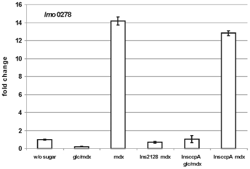 Transcription profile of lmo0278 . Results of qRT-PCR for lmo0278 in wild type and the Ins 2128 or Ins ccpA mutants. The strain was grown at 37°C in TSB without sugar or with 25 mM glucose + 1.0 percent maltodextrin (glc/mdx) or 1.0 percent maltodextrin (mdx). Cells were harvested in mid-log phase (OD600 0.5–0.6). The results from the qRT-PCR analysis, obtained with a StepOnePlus Real-Time PCR system (Applied Biosystems Inc.) were normalized using rpoB as an internal standard [45] , [62] and expressed as fold change with the values for wild type without sugar (WT w/o sugar) set as 1.0. Calculations were performed with the StepOne Software v2.1 (Applied Biosystems Inc.). Means and standard deviations from three independent experiments.