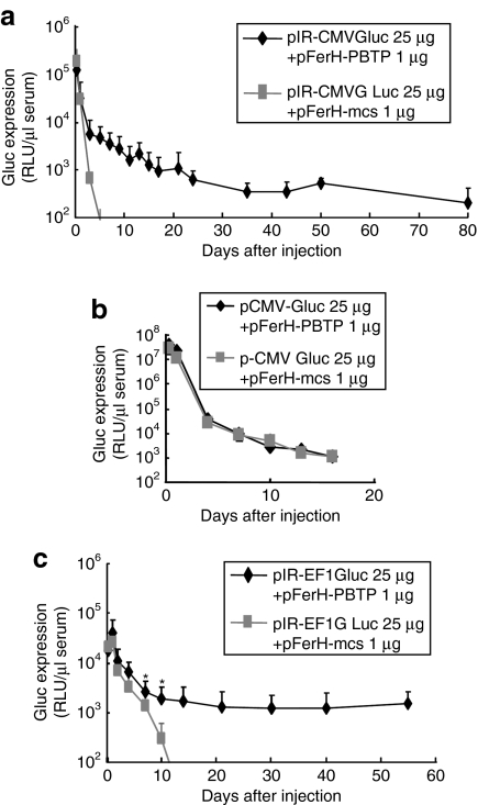 Sustained Gluc expression in vivo . Expression time course of Gluc from PB -based ( a,c ) or conventional ( b ) pDNA. 25 µg pIR-CMVGluc and 1 µg pFerH-PBTP (closed rhombuses), or pFerH-mcs (closed squares) were injected ( a ). 25 µg pCMV-Gluc and 1 µg pFerH-PBTP (closed rhombuses), or pFerH-mcs (closed squares) were injected ( b ). 25 µg pIR-EF1Gluc and 1 µg pFerH-PBTP (closed rhombuses), or pFerH-mcs (closed squares) were injected ( c ). Blood samples were collected at the indicated time points, and Gluc activities in serum were measured. Each value represents mean ± SD ( n = 4–6). RLU, relative light unit.