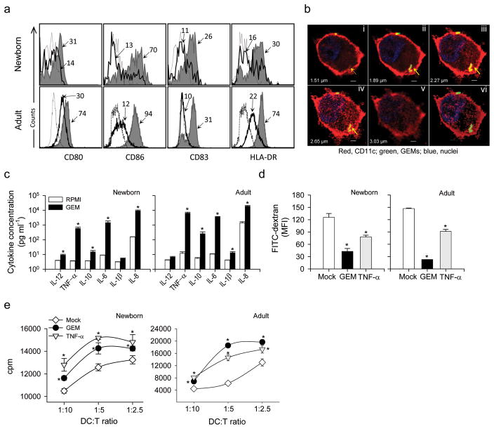 GEM particles enhanced the maturation of neonatal and adult human DC and the stimulation of T cells in a MLR. ( a ) Expression of cell surface markers CD80, CD86, CD83 and HLA-DR on human CD11c + neonatal and adult DC stimulated with GEM particles (shaded area) or mock- treated (solid line); the dashed line indicates the isotype control. The MFI on CD11c + gated cells is indicated. ( b ) Individual (i–v) and Z-stack projection (vi) confocal laser microscopy images showing CD11c + DC from human newborns harboring FITC-labeled GEM particles (arrows). CD11c + cell-surface expression is shown in red, and nuclei are shown by blue fluorescent staining. Scale bars, 2 μm. ( c ) Cytokines produced by human neonatal CD34 + - and adult derived DC stimulated with GEM particles or mock-stimulated and measured in culture supernatants. Data represent mean cytokine concentration±s.e.m. from two independent experiments. ( d ) FITC-dextran uptake by neonatal CD11c + and adult human DC exposed to GEM or TNF-α (positive control), or mock-treated DC, measured by flow cytometry; data represents MFI±s.e.m. from three independent experiments. ( e ) Allogeneic stimulation of adult CD3 + T cells in the presence of neonatal and adult human DC stimulated with GEM particles or TNF-α, or mock-stimulated DC. Data show mean cpm±s.e.m. from one of two independent experiments. ( c–e ) Significant differences (* P