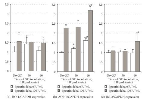 Quantitative real-time RT-PCR analysis of <t>HO-1</t> (a), AQP-1 (b), and Bcl-2 (c) expressions in mixed hTECs under basal conditions and after GO-induced oxidative stress (1 IU/mL) either or not in the presence of epoetin delta (100 IU/mL). GAPDH was used as endogenous control housekeeping gene. Preconditioning the cells with EPO resulted in a significant upregulation of HO-1 and AQP-1 mRNA. GO-induced oxidative stress further increased HO-1, AQP-1, and Bcl-2 mRNA expressions with maximum levels 60 minutes after induction of oxidative stress. Data are presented as the mean ± SD of triplicate determinations of 2 runs (i.e., 6 values each). * P