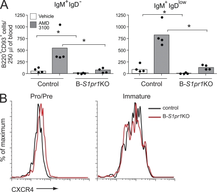 Impaired release of immature bone marrow B cells by CXCR4 antagonism in the absence of S1P1 receptor. (A) Mice were injected with the CXCR4 antagonist AMD3100 or vehicle alone, and bone marrow and blood were collected after 90 min. Immature bone marrow B cells in the blood (B220 + CD93 + ) were gated as IgM + IgD − and IgM + IgD low , and quantified from control and B- S1pr1 KO mice. Results are shown as absolute numbers in 250 µl of blood. Bars represent mean values, and the closed circles are individual mice. Data are representative of three experiments. *, P