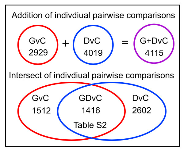 Intersection of microarray data identifies common markers of astrocytic cancer cells . Venn diagram depicting the overlap, identified by the supervised hierarchical analysis, between the two pair wise comparisons, GvC and DvC, that was used to identify the 1038 transcripts exhibiting consistent sign changes in expression patterns in trisomic BG01V APCs (samples G) and the CCF-STTG1 astrocytoma cell line (samples D) relative to diploid H9 APCs (samples C), which constitutes the GDvC gene list shown in Additional file 2 , Table S2.