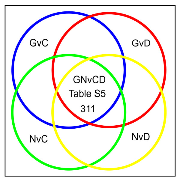 Intersection of microarray data identifies markers of premalignant astrocytic stem-like/progenitor cells . Venn diagram depicting the overlap between the four pair wise comparisons: GvC, GvD, NvC and NvD that was used to identify the 311 transcripts exhibiting similar changes in expression patterns in trisomic BG01V APCs (samples G) and glioblastoma patients (samples N) relative to diploid H9 APCs (samples C) and CCF-STTG1 astrocytoma cells (samples D), which constitutes the GNvCD gene list shown in Additional file 6 , Table S5.
