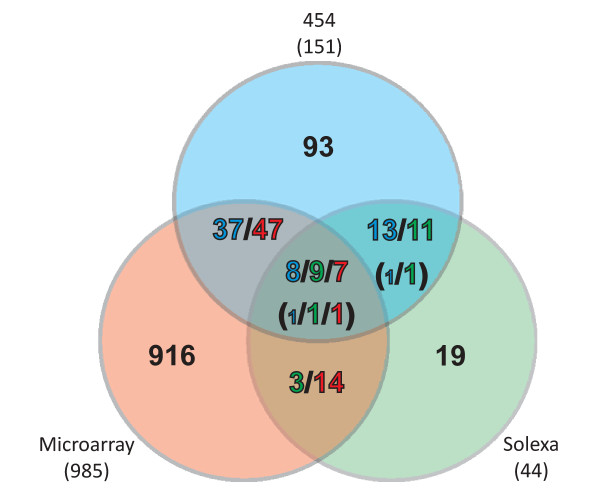 Venn diagram comparing trans-encoded sRNA candidates identified by 454 sequencing, Illumina/Solexa sequencing, and microarray hybridizations . In some cases a sRNA region detected by one method overlaps with multiple regions detected by one or both of the other methods. This is indictated by the colors of the numbers in the fields representing the overlaps. Numbers in brackets indicate discrepancies in the classification of sRNA regions identified by different methods. Small numbers indicate 454 deep sequencing candidates not classified as trans-encoded sRNA.