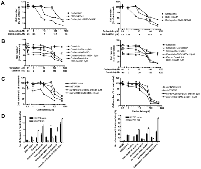 Co-inhibition of RELA and STAT5B pathways by small molecule inhibitors synergistically sensitizes chemoresistant ovarian cancer cells to cytotoxic effect of carboplatin. A) SKOV3-CR (left panel) and A2780-CR cells (right panel) were treated with a series of concentrations of carboplatin and BMS-345541 for 4 days before IC 50 curves were obtained. B) SKOV3-CR (left panel) and A2780-CR cells (right panel) were treated with a series of <t>dasatinib</t> concentrations, or a series of carboplatin concentrations, or 5 µM BMS-345541 in combination with a series of dasatinib concentrations, or a series of concentrations of dasatinib and carboplatin, or 5 µM BMS-345541 in combination with a series of concentrations of dasatinib and carboplatin for 4 days before IC 50 curves were measured. C) SKOV3-CR (left panel) and A2780-CR cells (right panel) were either transfected with STAT5B- or control shRNAs, with or without 5 µM BMS-345541 treatment, and subjected to a series of concentrations of carboplatin for 4 days before IC 50 curves were determined. D) Annexin V assay to measure apoptosis of chemoresistant cells and their naïve counterparts after treatment with carboplatin (6 µg/ml) and/or BMS-345541 (5 µM) and/or dasatinib (100 nM) for 48 hours. Annexin V positive cells were quantified using flow cytometry. Left panel: SKOV3-CR; right panel: A2780-CR.