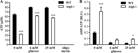 ATP concentrations and ADP/ATP ratios in Atgl −/− and WT macrophages. A , ATP levels in Atgl −/− and WT MPM were measured after cultivating the cells for 24 h in DMEM, 10% LPDS containing 0, 6, and 25 m m glucose. Oligomycin (0.5 μ m ) was used as an ATP-depletion control. Data are presented as mean values ( n = 4) ± S.E. ***, p ≤ 0.001. B , ADP/ATP ratios in Atgl −/− and WT MPM were determined using the EnzyLight TM ADP/ATP ratio assay kit. Data are expressed as mean values ( n = 4) ± S.E. *, p