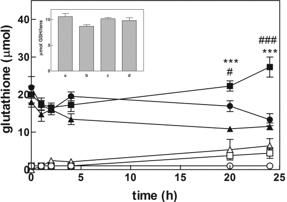 Changes in glutathione level during lens culture. Bovine lenses were incubated in a final volume of 40 ml in a <t>GSH/Gly-Gly</t> medium (see Methods) alone (circles), or in the presence of 10 mM serine/borate (squares) or 10 mM serine/borate and 0.5 mM <t>Cys-Gly</t> (triangles). Closed and open symbols refer to the extra-lenticular level of total glutathione and GSSG, respectively. Inset: bars refer to total glutathione intra-lenticular level measured after 24 h of incubation in the following conditions: a: standard medium; b: GSH/Gly-Gly medium; c: GSH/Gly-Gly/SB medium; d: GSH/Gly-Gly/SB medium supplemented with Cys-Gly. Statistical analysis was performed comparing the values measured under different conditions at the same time of incubation. (#): p