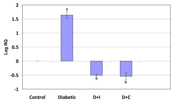 Real Time PCR amplification of dopamine D1 receptor mRNA from the cerebral cortex of control and experimental rats . Values are mean ± S.D of 4-6 separate experiments. Each group consist of 6-8 rats Relative Quantification values and standard deviations are shown in the table. The relative ratios of mRNA levels were calculated using the ΔΔ CT method normalized with β-actin CT value as the internal control and Control CT value as the calibrator. a p