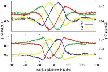 Mono-nucleotide patterns in H. sapiens . These patterns were derived by aligning DNA sequences at experimentally determined nucleosome dyads, and computing the resulting position specific frequency matrix. The correlation between the corresponding mono-nucleotide patterns derived from the Barski nucleosome positions (top) and the Schones nucleosome positions (bottom) is .