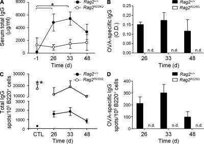Rag2 R229Q mice fail to induce specific humoral response to OVA. WT and Rag2 R229Q mice were immunized into the footpad with OVA emulsified in CFA and boosted at day 21 in IFA. PBS was injected in control mice. Total IgG1 (A) and anti-OVA–specific IgG (B) antibody titers were determined at days 26, 33, and 48 after challenge by ELISA. Each point represents mean values + SD from n = 3–4 mice and were corrected for background binding. Frequency analysis of total (C) and specific (D) ISCs by ELISpot assay on splenocytes from WT and Rag2 R229Q mice at the indicated times after OVA challenge. Data represent the mean ± SD number of spots obtained from n = 3–4 mice/group analyzed in two independent experiments and normalized to 10 5 B220 + cells. n.d., not detectable. CTL, PBS-treated control mice. *, P