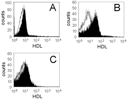 HDL interaction with MP T . The binding of FITC-HDL to monocytes (A), MP T (B) and MP from unstimulated HUT-78 cells (C) was analyzed by flow cytometry. Results are representative of 3 different experiments.