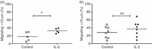 (a) The percentage of blood T cells migrating within three-dimensional collagen gels after 6 days of <t>interleukin-2</t> (IL-2) stimulation compared with the unstimulated control ( n = 5, P