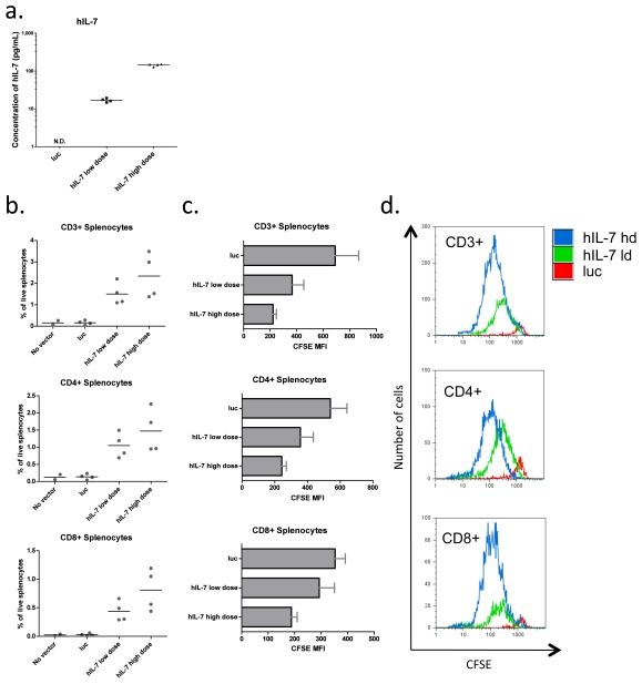 Lentiviral vector delivery of hIL-7 promotes homeostatic proliferation of adoptively transferred human T cells in Rag2-/-γc-/- mice. a. Serum concentrations of hIL-7 detected by ELISA three weeks after intravenous administration of 9×10 7 or 1.7×10 8 IU of lentivirus expressing either luciferase or hIL-7. b. The percentage of CD3+, CD4+ or CD8+ T cells of live splenocytes following one week post transfer of 2×10 7 CFSE labeled human PBMCs into Rag2-/-γc-/- mice from A. c. Average mean fluorescence intensity (MFI) of CFSE measured by flow cytometry in T-cell subsets quantified in B. Four mice were used per group, and the average and SEM are shown. d. Representative histograms showing CFSE loss by CD3+, CD4+ or CD8+ adoptively transferred T cells from mice receiving the control vector, low dose hIL-7 or high dose hIL-7.