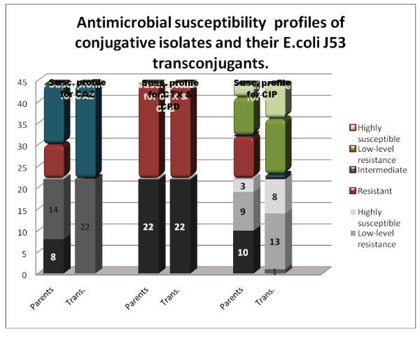 Antimicrobial susceptibility profiles done on the 22 conjugative isolates (parents) and their <t>transconjugants</t> for the antimicrobial agents, ceftazidime (CAZ), cefotaxime (CTX), cefpodoxime (CPD) and ciprofloxacin (CIP) .