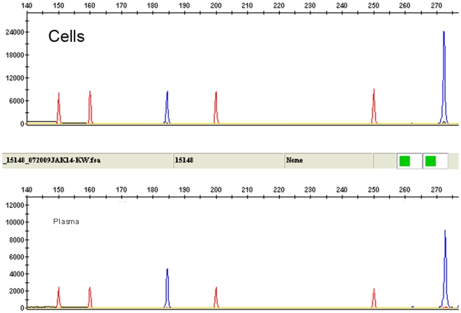 Source of RNA for detection of JAK2 Δexon14 transcript using RT-PCR with fragment length analysis. Similar results are obtained whether RNA is isolated from plasma or peripheral blood cells. Size marker is shown as red peaks and amplification products are shown in blue.