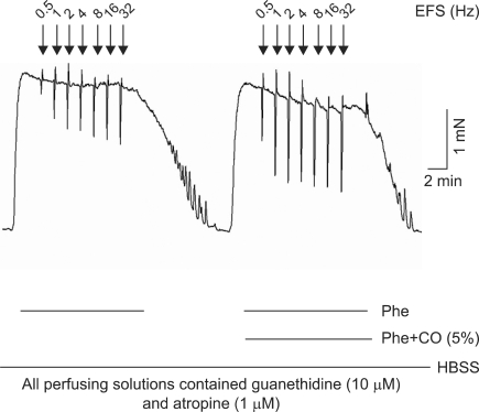 Effect of carbon monoxide (5%) on corpus cavernosum smooth muscle (CCSM) relaxation induced by electrical field stimulation (EFS). Rat CCSM was phenylephrine-precontracted and responded to EFS (0.5 to 32 Hz, 0.2 ms duration). HBSS: Hank's balanced salt solution.