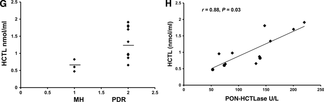 PON activity and HCTL levels in the vitreous of PDR and MH case subjects. Distribution graphs show the reciprocal relationship of HCTLase and AREase in PDR ( n = 13) and MH ( n = 8). A : PON-AREase activity. B : PON-HCTLase activity. C : Activity staining for PON protein in the vitreous using phenylacetate as substrate and parasoaniline as chromogen. The band was observed at 66 kDa ( lane 1: MH; lane s 2–4 : PDR; lane 5 : high–molecular weight marker). Representative liquid chromatography–tandem mass spectrometry chromatogram showing the HCTL ( left ) and the corresponding internal standard, namely homatropine ( right ). D : Standard vitreous. E : MH vitreous. F : PDR vitreous. The m/z of HCTL is 118.2 and homatroprine is 276.1 (seen as the peak). G : Distribution of HCTL levels in PDR ( n = 9) and MH ( n = 3) case subjects. Correlation between HCTL and PON-HCTLase is shown. H : PDR ( n = 9), ♦; MH ( n = 3), ●. (A high-quality color representation of this figure is available in the online issue.)