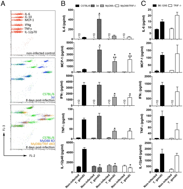 Unimpaired production of pro-inflammatory cytokines in 3d mice infected with T. gondii . (A–C) Levels of IL-6, MCP-1, IFNγ, and TNFα measured in sera of mice at 0 and 8 days after infection, employing the BD Cytometric Bead Assay (CBA) Mouse Inflammation Kit. IL-12p40 levels in sera of mice were measured by ELISA. A panel with results from representative individual wild-type, 3d, MyD88-deficient and MyD88/TRIF double deficient animals is shown in A. One asterisk indicates that p