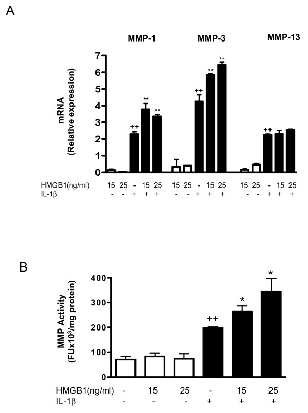Effect of HMGB1 and IL-1β on MMP mRNA levels in osteoarthritic synoviocytes and MMP activity released into the medium . (a) Matrix metalloproteinase (MMP)-1, MMP-3 and MMP-13 mRNA levels and (b) MMP activity. Cells were stimulated with IL-1b (10 ng/ml) for 24 hours in the presence or absence of high mobility group box 1 (HMGB1) at 15 and 25 ng/m. mRNA was determined by real-time PCR and MMP activity was measured in supernatants by a fluorometric procedure, as indicated in Materials and Methods. Data are expressed as mean ± standard error of the mean. Duplicate samples from four patients were used. ++ P