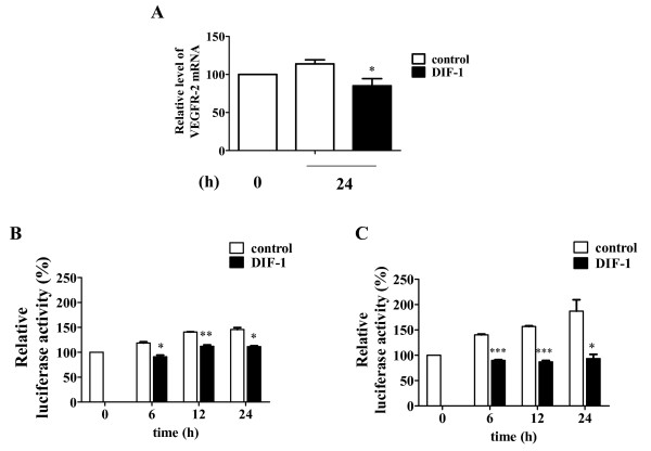 DIF-1 reduced VEGFR-2 mRNA level and promoter activity . (A) The effects of DIF-1 on the VEGFR-2 mRNA levels. Total RNAs were extracted from HUVECs treated with or without DIF-1 (30 μM) for 24 h. The VEGFR-2 mRNA levels were determined by TaqMan quantitative real-time RT-PCR. Values are mean ± SE of four independent experiments. The asterisk indicates *P