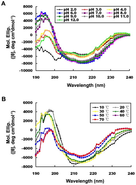 CD spectra of the Rv0045c protein at different pH and temperatures. The CD measurements were made in the presence of various pH (A) at pH 2.0 (black), pH 3.0 (red), pH 4.0 (yellow), pH 6.0 (blue), pH 7.0 (purple), pH 8.0 (pink), pH 9.0 (green), pH 10.0 (gray), pH 11.0 (coral) and pH 12.0 (light green) at room temperature, and different temperatures (B) at 10°C (black), 20°C (gray), 30°C (yellow), 40°C (green), 50°C (blue), 60°C (purple) and 70°C (red) at pH 7.5, respectively. Values represent the mean ± SD of three analyses. The concentration of the Rv0045c protein was fixed at 0.35 mg/mL (20 mM Tris, pH 7.5).