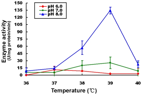 Effects of temperature and pH on enzyme activity of the Rv0045c protein. The enzyme activities were measured using p-butyrate caprylate (C 6 ) as substrate in the presence of mild temperatures (36°C–40°C) at pH 6.0 (red), pH 7.0 (green) and pH 8.0 (blue). Values represent the mean ± SD of five analyses. The concentration of the Rvoo45c protein was fixed at 0.2 mg/mL (20 mM Tris, pH 7.5). The enzyme activities were expressed as units hydrolase/mg protein/min (one hydrolase unit is the quantity of enzyme required to increase absorbance by 0.01 units at 405 nm per min).