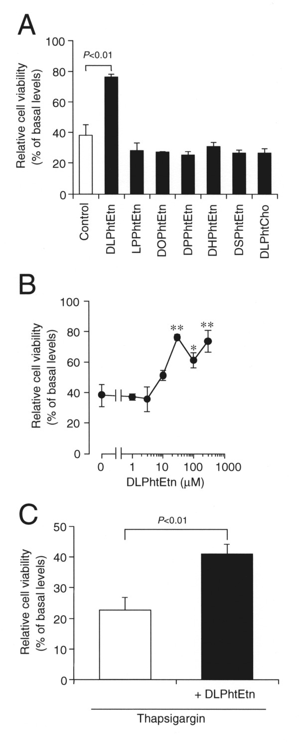 The effect of DLPhtEtn on PC-12 cell death induced by amyloid-β 1-40 peptide or <t>thapsigargin</t> . ( A ) PC-12 cells were treated with amyloid-β 1-40 peptide (5 μM) in the absence (Control) and presence of phospholipids (30 μM) as indicated in serum-free extracellular solution for 48 h, and cell viability was assayed. Data represents the mean (± SEM) percentage of basal levels (MTT intensities of cells untreated with amyloid-β 1-40 peptide) (n = 6 independent experiments). ** P