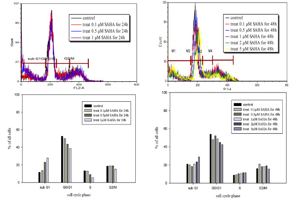 Fluorescence activated cell sorting (FACS) analysis revealed SAHA-induced sub-G1 arrest in 320HSR cells . Cells were harvested 48 h after stimulation in the absence or presence of SAHA (0.1 μM to 5 μM). Intracellular PI fluorescence intensities of cells are presented in the upper panels. The percentage of cells in the G0/G1 phase was significantly inhibited by SAHA treatment after 24 or 48 h. The percentage of cells in the sub-G1 phase was significantly increased in response to SAHA treatment.