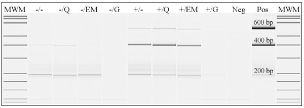 Assessment of maximum amplicon length: visualisation on gel . Gel image of 200-400-600 bp multiplex PCR-products of representative tissue B. The +/ and -/ indicate the use of proteinase K digestion or no digestion, respectively. The different extraction methods are indicated by: heat-treatment =/-, QIAamp DNA extraction =/Q, EasyMAG DNA extraction =/EM, Gentra DNA extraction =/G. Neg = ultrapure water in PCR, Pos = QIAamp extracted DNA from EDTA-blood.