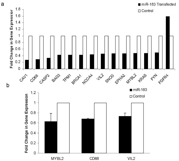 Dysregulation of mRNAs following induced overexpression of miR-183 . Figure 5a : 14 genes were differentially expressed in T47D cells transfected with pre- miR-183 compared to negative control. Gene expression was analysed using TLDA. Figure 5b : RQ-PCR using conventional taqman assays verified downregulation of a selection of breast cancer associated genes following transfection of T47D cells with pre-miR-183.