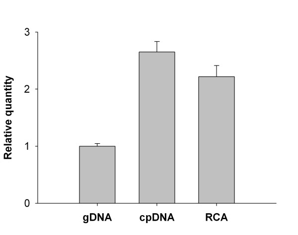 Enrichment of chloroplast <t>DNA</t> from karaka . The relative quantity of chloroplast DNA was determined in preparations of genomic DNA (gDNA), chloroplast-enriched DNA (cpDNA) and RCA amplified chloroplast-enriched cpDNA (RCA). Quantitative <t>PCR</t> amplification of the plastid encoded psbB gene was compared to amplification of nuclear 18S rRNA . The mean of four technical replicates ± SE has been reported as fold-differences relative to gDNA.