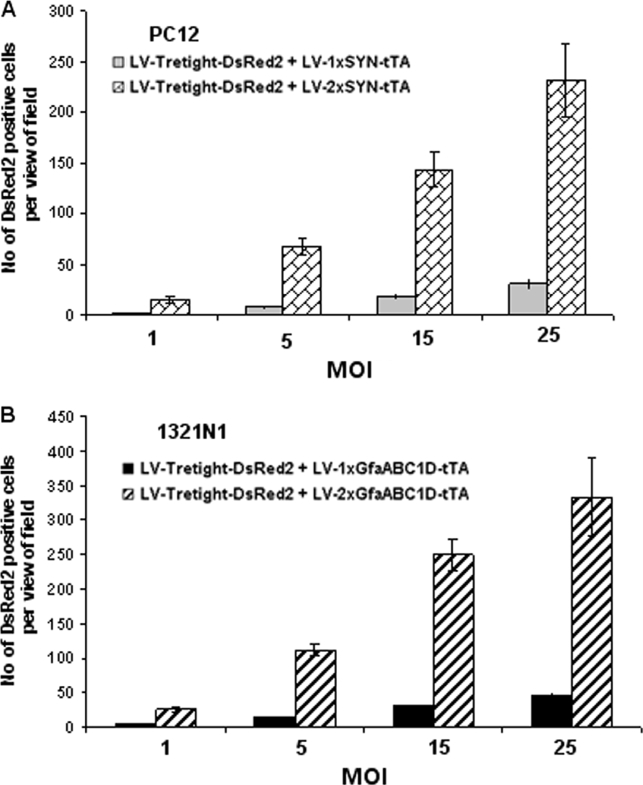 Quantification of in vitro transgene expression from transcriptional amplification-enhanced Tet-Off regulatory systems at MOIs of 1, 5, 15 and 25. (A) SYN-containing system in neuronal PC12 cells. (B) GfaABC1D-containing system in astroglial 1321N1 cells. Numbers of DsRed2-positive cells per field of view were counted under 100× magnification. Six fields were selected randomly for cell counting. The error bars indicate the standard deviations