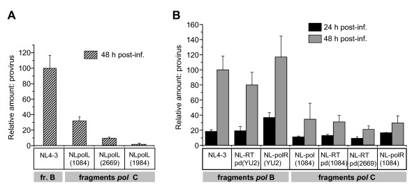 Presence of RT functional domains from HIV-1 subtype C isolates correlates with decreased level of viral DNA integration . A - Integration of cDNA of NL4-3 or NL-based viruses carrying protease and RT polymerase domains from subtype C isolates in Sup-T1 cell DNA at 24 h p.i. Cells were infected as described in the legend to Figure 5B. Total DNA was harvested and relative amounts of proviral DNA were measured using two-step Alu -based nested PCR assays as described in Materials and methods. Levels of provirus are shown as percentages of the maximum levels of integration detected in cells infected with NL4-3. Error bars show the standard deviation of three independent viral preparations. B -Integration of the backbone NL4-3 and chimeric viruses in Sup-T1 cells at 24 and 48 h p.i. DNA from the infected cells was harvested and subjected to quantitative real-time PCR as described in A. Levels of proviral DNA are shown as percentage of those detected in cells infected with NL4-3 at 48 h p.i. Results are mean ± SD of three independent experiments.