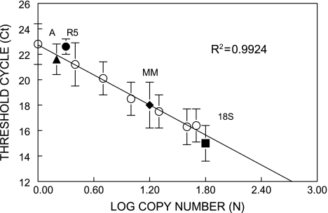 Summary of RT–PCR analysis of in vivo transgene copy number. Standard curves were based on quantifications of the ori amplicons, using replicated sets of template composed of CD2F 1 non-transgenic mouse DNA mixed with λgt10- lacZ (see Figure 3 Materials and methods) to generate haploid standards of 1, 2.5, 5, 10, 20, 40 and 50 copies. Cycle thresholds ( C t ) and efficiency parameters were obtained by iCycler software and show a linear correlation with log copy number values ( R 2 = 0.9924). Shown are average C t values for: ori standards (open circles), single-copy annexin V exon 4 (closed triangle, A); R5 rearrangement (closed circle, R5); interpolated copies of Muta™mouse ori (closed diamond, MM) and 18S (closed box, 18S).