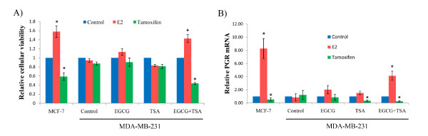 Treatment with EGCG and TSA retrieved responsiveness to E 2 and tamoxifen in ER-negative cells . A) Cellular viability in response to E 2 and tamoxifen. B) The expression of PGR, an ERα target gene, in response to E 2 and tamoxifen. EGCG and/or TSA-pretreated MDA-MB-231 cells were treated with or without 10 nM of E 2 or 1 μM tamoxifen for 2 days. MCF-7 cells served as a positive control. Cells were harvested at the indicated time periods and assessed for cellular viability and PGR expression, respectively. Cellular viability was measured by Trypan blue exclusion assay. PGR expression was detected by quantitative real-time PCR. Data were obtained from three independent experiments and normalized to GAPDH and calibrated to levels in samples without treatment of E 2 and tamoxifen. Bars, SD; *, P