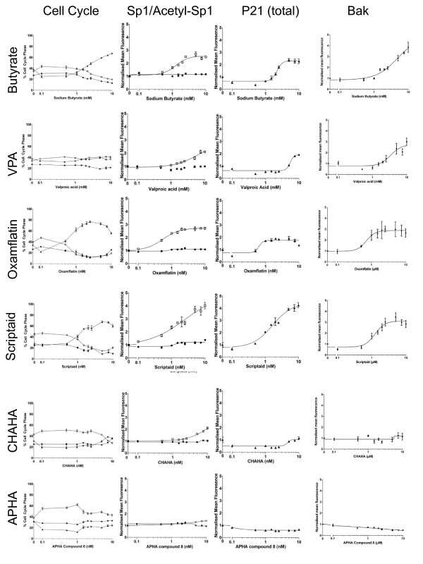 Effect of HDACi on cell cycle, p21 expression, bak expression and Sp1 expression and acetylation . The extent of the concomitant response of Sp1 acetylation, cell cycle arrest and p21 up-regulation was determined using a high-content biology approach. HCT116 cells were treated with concentration ranges of 0-20 mM sodium butyrate, 0-20 mM valproic acid (VPA), 0-20 μM Oxamflatin, 0-20 μM Scriptaid, 0-20 μM APHA compound 8, 0-20 μM CHAHA. In all cases treatments were carried outfor 24 h. Cells were stained using immunocytochemistry for DNA content (Hoescht), p21, bak, Sp1 and acetyl-Sp1 as described in the methods section. Cells were analysed, on the basis of DNA content, for cell cycle phase and divided into G1 (filled circles), S (filled squares) or G2/M (filled triangles). Levels of protein were calculated from mean total fluorescence and are expressed in terms of fluorophore fluorescence relative to that observed in untreated cells. Sp1 (filled squares) and acetyl-Sp1 (open squares) are shown on the same graph.