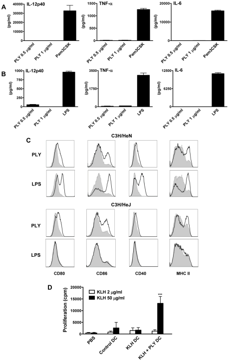 Endotoxin-free PLY does not induce cytokine production by DC or macrophages but does enhance DC maturation in a TLR4-independent manner. DC (A) or BMDM (B) from C57BL/6 mice were incubated with PLY (1 µg/ml or 0.5 µg/ml) or Pam3CSK (10 µg/ml) or LPS (500 pg/ml) for 24 hours. Supernatants were analyzed for IL-12p40, TNF-α and IL-6. Results are presented as mean cytokine concentrations (+ SEM) for triplicate samples. (C) DC from C3H/HeN or C3H/HeJ mice were incubated with medium, PLY (1 µg/ml) or LPS (500 pg/ml). After 24 hours, cells were washed and stained with antibodies specific for CD80, CD86, CD40 and MHC Class II. Immunofluorescence is shown for PLY- or LPS-treated DC (black line) compared to untreated cells incubated with medium (grey histograms). Plots are representative of three independent experiments. (D) Adoptive transfer of DC incubated with antigen and PLY promotes antigen-specific T cell responses. BALB/c mice were immunized subcutaneously in the footpad with DC (5×10 5 cells/mouse) that had been incubated overnight with medium only as a control or with KLH antigen (10 µg/ml) in the presence or absence of PLY (1 µg/ml). 7 days later splenocytes were isolated and stimulated ex vivo with KLH (2 or 50 µg/ml). Proliferation was measured by [ 3 H]-thymidine incorporation after 4 days of culture and is expressed as mean cpm (+ SEM; n = 5). *** P