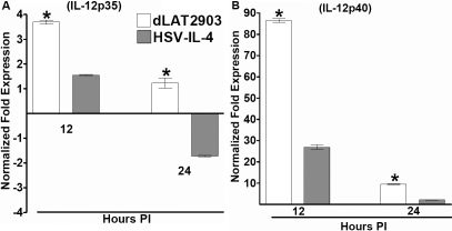 Level of IL-12p35 and IL-12p40 transcripts in macrophages infected with HSV-IL-4. Subconfluent monolayers of macrophages were infected with 10 PFU/cell of HSV-IL-4 or parental virus. Total RNA was isolated 12 and 24 h post infection and TaqMan RT–PCR was performed using IL-12p35 - and IL-12p40 -specific primers as described in the Methods. IL-12p35 and IL-12p40 mRNA levels were normalized in comparison to each transcript in mock-infected cells. GAPDH was used as internal control. Each point represents the mean±SEM (n=8).