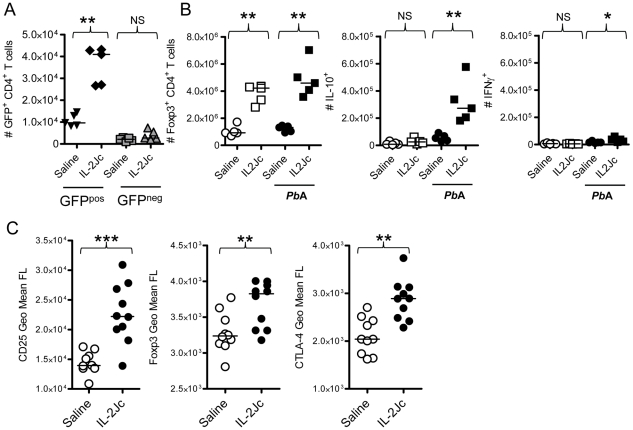 Analysis of Treg cells expanded by IL-2Jc during ECM. A) Viable Foxp3 + CD4 + Treg cells (GFP pos ), and Foxp3 − CD4 + non-Treg cells (GFP neg ) were cell sorted from the spleens of naïve foxp3 gfp/gfp mice. 1×10 6 GFP pos cells or 5×10 6 GFP neg cells were adoptively transferred into mice, which were then infected with Pb A, and treated either with IL-2Jc or control saline. Four days later, numbers of splenic GFP + CD4 + T cells were enumerated. B) Naïve C57BL/6 mice, and those infected with Pb A, were treated with IL-2Jc or control saline. Four days later, spleens were isolated, Foxp3 + CD4 + T cells were enumerated by flow cytometry, and IL-10 and IFNγ production by these cells was assessed directly ex vivo by intracellular cytokine staining. C) Four days after infection with Pb A, splenic CD4 + Foxp3 + T cells from IL-2Jc treated and control saline treated mice we assessed for expression of CD25, Foxp3 and CTLA-4 by flow cytometry. Mann-Whitney: ***p
