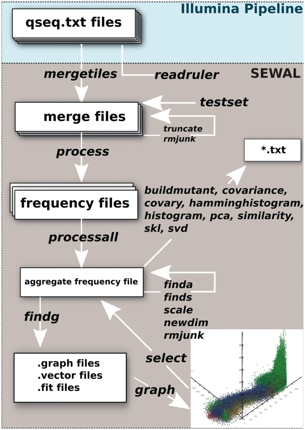 SEWAL pipeline for sequence analysis. SEWAL currently reads qseq.txt files generated by the <t>Illumina</t> pipeline. SEWAL commands are shown in italics. File types are shown by white boxes. All files are tab-delimited text files with defined formatting. Inset graphic is a screenshot of the SEWAL interactive graphics window.