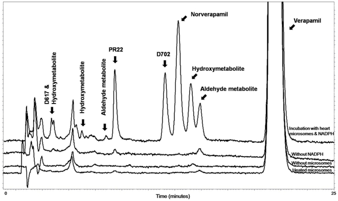 <t>Verapamil</t> and its metabolites produced following incubation with human heart microsomes. <t>HPLC</t> chromatogram depicting nine metabolites detected following the incubation of verapamil with microsomes prepared from human heart ventricles. Structure allocation was established following peak collection and reanalysis by LC-MSMS according to Walles et al. assay. [26] Metabolites PR22, D702, norverapamil and a hydroxymetabolite (retention time 14 min) were present in sufficient amounts to allow quantification. The characterization of CYP450-dependency on the formation of four major verapamil metabolites by microsomes prepared from human heart samples is illustrated. Metabolites could not be detected in the absence of a NAPDH regenerating system or in the presence of pre-heated microsomes.