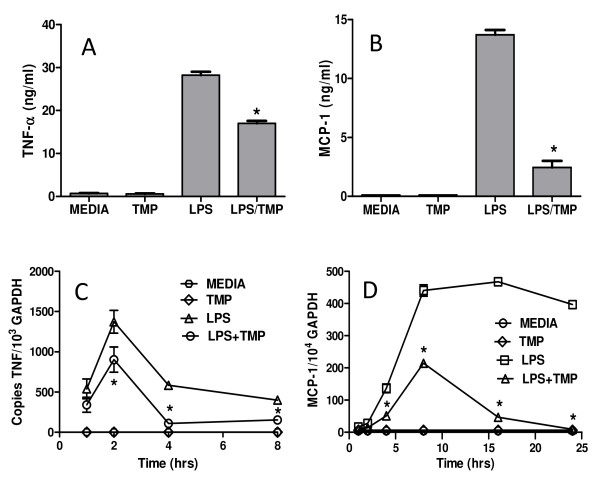 TMP inhibits TNF-α and MCP-1/CCL-2 protein and mRNA . RAW 264.7 cells were either stimulated with 1 μg/ml of LPS or 1 μg/ml of LPS and 25 μM TMP. Following 24 h of treatment, supernatants were collected and levels of TNF-α (A) and MCP-1/CCL2 (B) were determined by ELISA. To assess the effects of TMP on the transcription of TNF-α (C) and MCP-1/CCL2 (D) genes, RNA was prepared from RAW 264.7 cells stimulated with 1 μg/ml of LPS or 1 μg/ml of LPS and 25 μM TMP for the indicated time periods. Quantitative RT-PCR was used to analyze the levels of TNF-α and MCP-1/CCL2 mRNA. Asterisks indicate significant differences between treatments with LPS and LPS and TMP (p