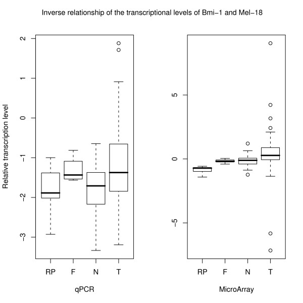 Quantitative real-time PCR shows the same inverse relationship between the transcriptional levels of Bmi-1 and Mel-18 as the microarray data . The qPCR results were calculated using the comparative C T -method (-ΔΔC T ) while the microarray results are given as the difference in expression of the two genes (log 2 (expression of Bmi-1/expression of Mel-18)).