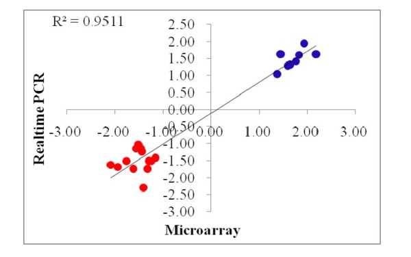Technical validation for microarray results using <t>realtime</t> <t>PCR:</t> Correlation of fold changes between microarray and realtime PCR.